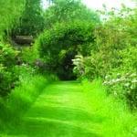 Jardin au début du 21eme siècle