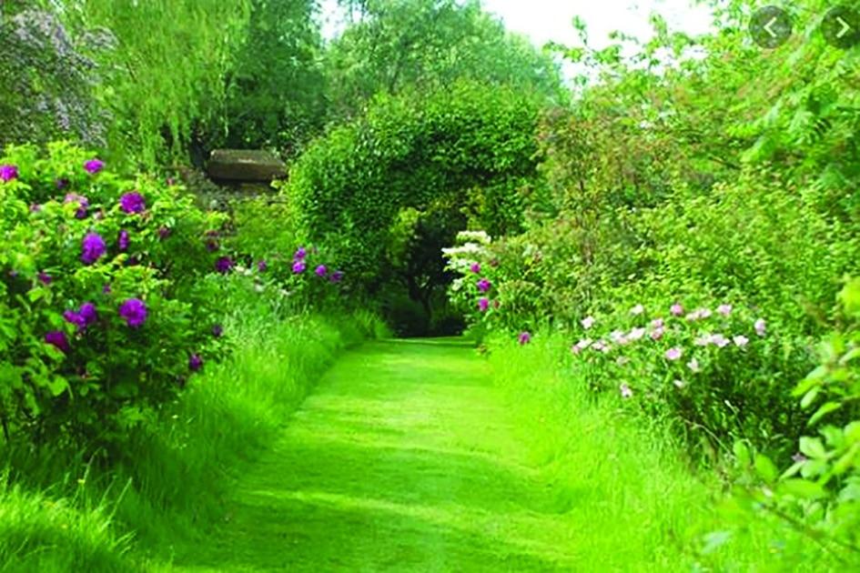 Le Riverain - Jardin au début du 21eme siècle