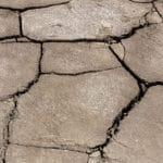Dispositif exceptionnel de soutien aux victimes de l'épisode de sécheresse – réhydratation des sols survenu en 2018